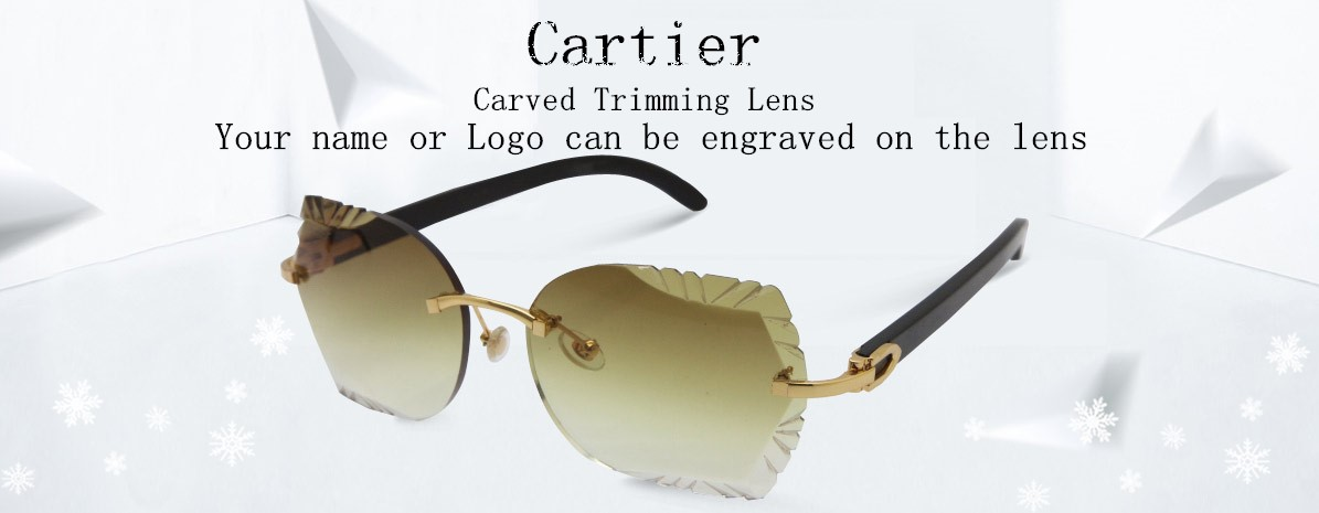 Cartier Big Stones Buffalo Horn 7550178 Sunglasses